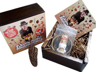 mushrooms USB box packaging