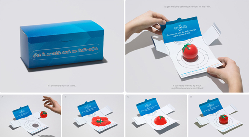 lavoline creative direct mail marketing